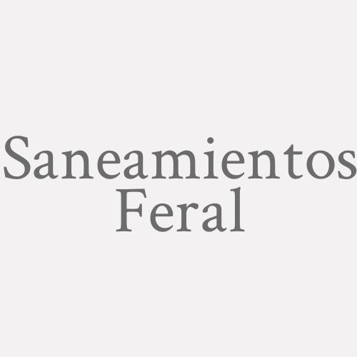Saneamientos Feral