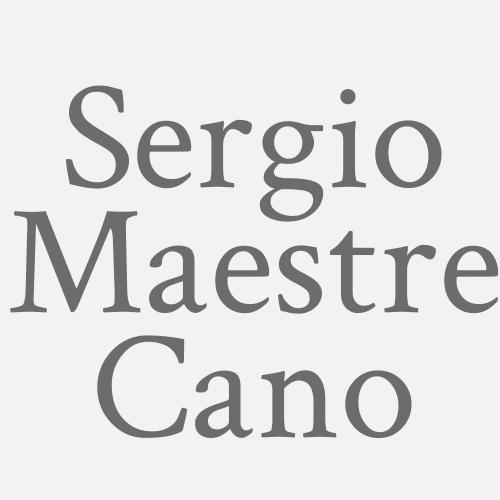 Sergio Maestre Cano