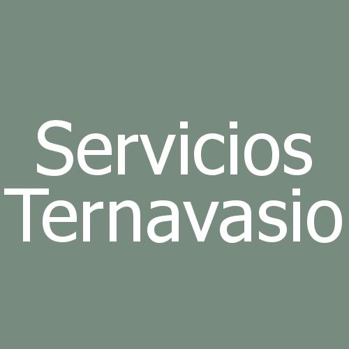 Servicios Ternavasio