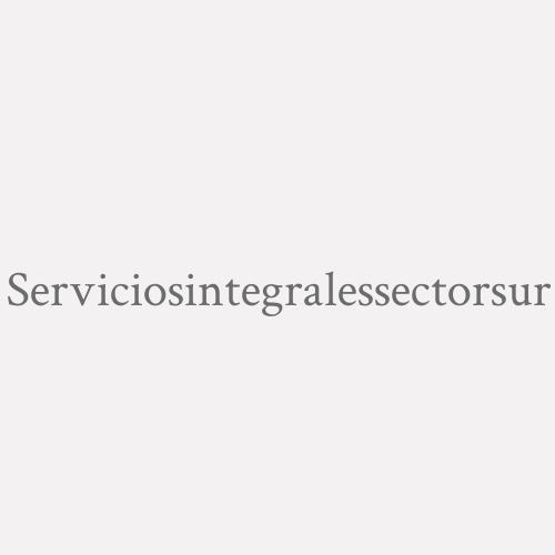 Serviciosintegralessectorsur