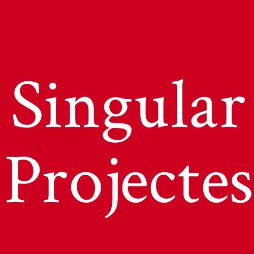 Singular Projectes
