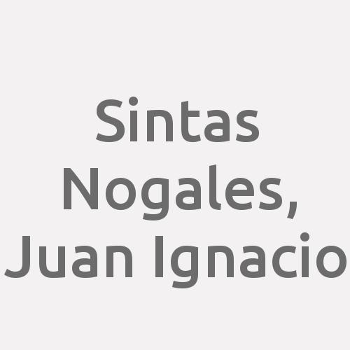 Sintas Nogales, Juan Ignacio