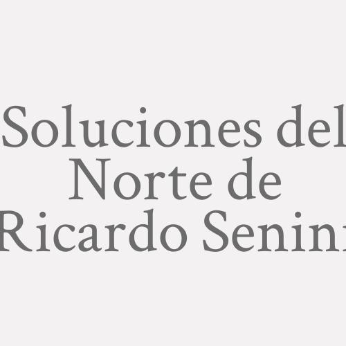 Soluciones Del Norte De Ricardo Senini