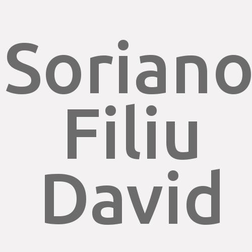 David Soriano Filiu