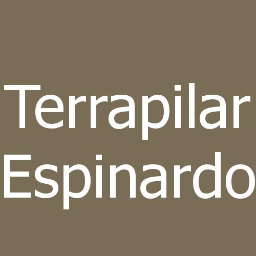 Terrapilar Espinardo