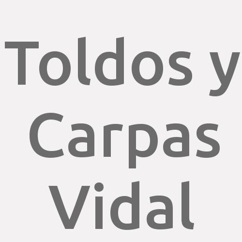 Toldos y Carpas Vidal