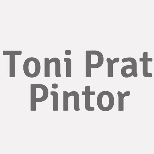 Toni Prat Pintor