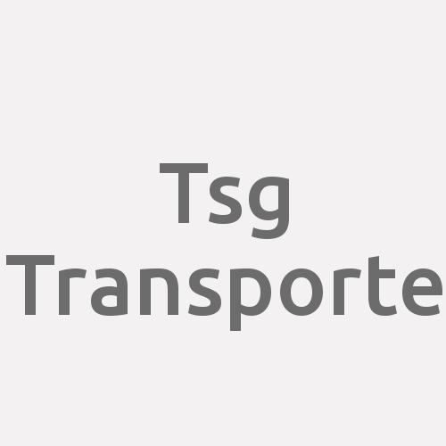 Tsg Transporte