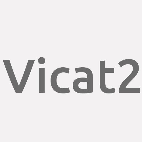 Vicat2