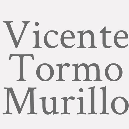 Vicente Tormo Murillo