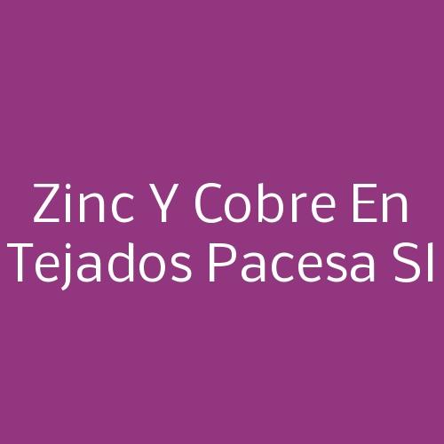 Zinc Y Cobre En Tejados Pacesa SL