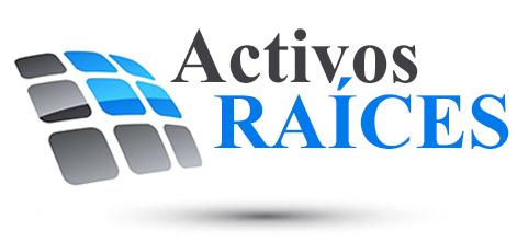 Activos Raices Multiservicios