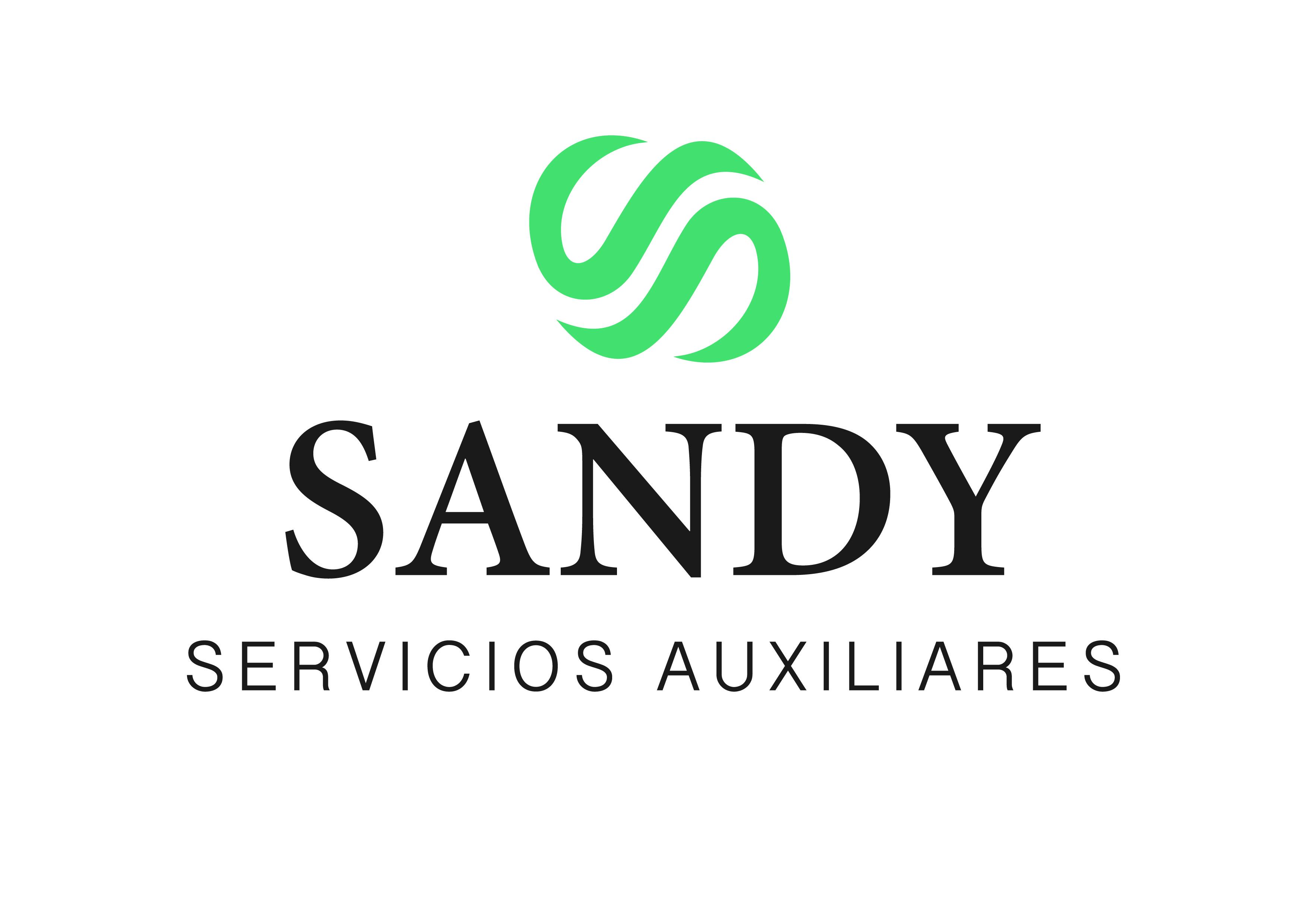 Grupo Sandy