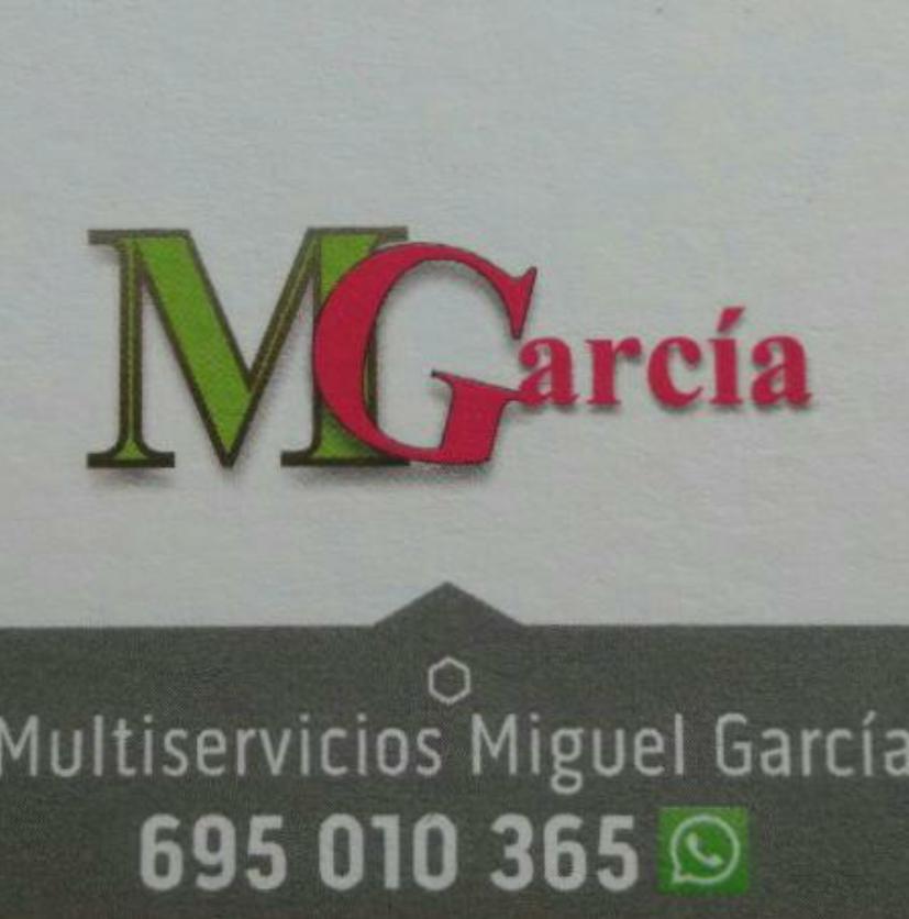 Multiservicios Mgarcia