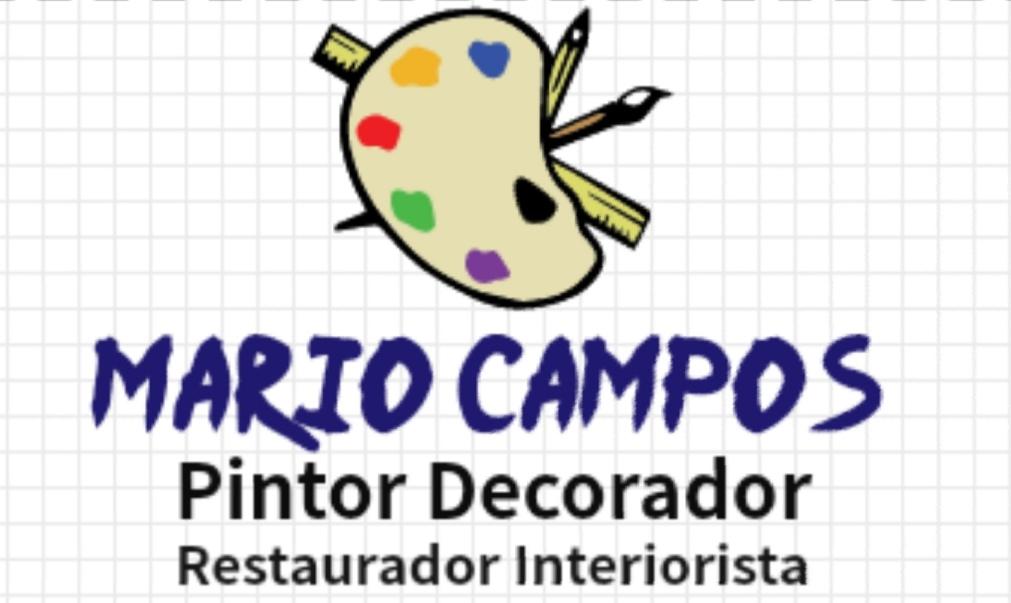 Mario Campos Decoracion En Pintura
