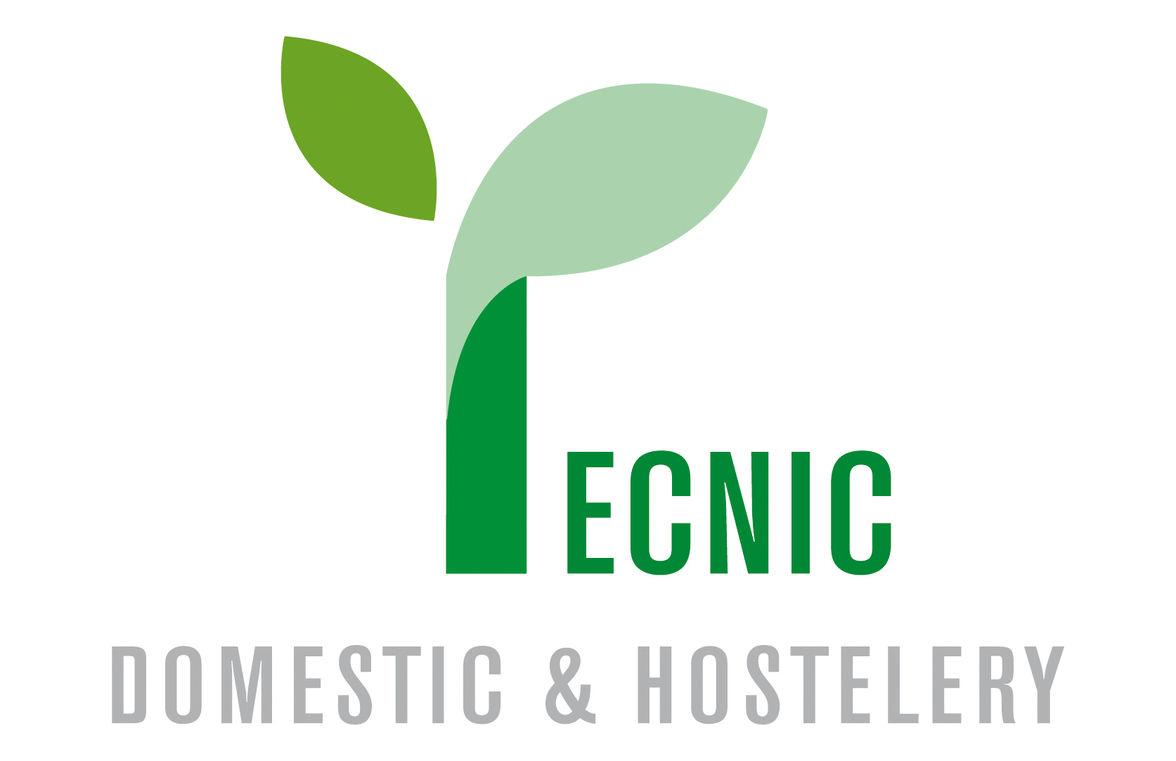 Tecnic Domestic & Hostelery