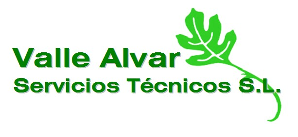 Vallealvar Servicios Tecnicos S.L.