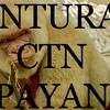 Ctn Payan Servicios