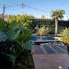 Jardineria Font D,abril
