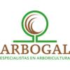 Arbogal S.l.