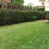 Puesta apunto jardín