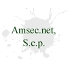 Amsec.net, S.c.p.