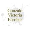 Gonzálo Victoria Escobar
