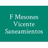 F Mesones Vicente Saneamientos
