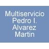 Multiservicio Pedro I. Alvarez Martin