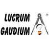 LUCRUM GAUDIUM - Reformas Integrales