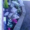 Limpieza y poda jardin