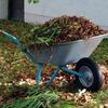 Recortar enredadera y recoger hojas