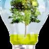 Luz Nature Electricidad Y Eficiencia Energética