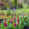 Jardineria Verde/renacer