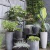 Replanteamiento jardin en l poco soleado