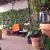 Tapizado de tumbonas jardin en textiline naranja o rojo
