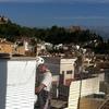 Colocación de red anti golondrinas en edificio público