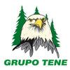 Grupo Tene