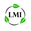 L.M.I FACILITY, S.L