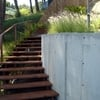 Escaleras de pino
