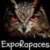 Exporapaces