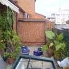 Armario terraza aluminio - pvc 230x74x50