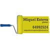 Pintures Miquel Esteva