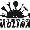 Multiservicios Molina