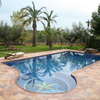 Construir piscina con jacuzzi