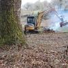 Limpiar un monte de unas 3 hectáreas