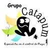 Grupo Catapum