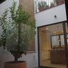 Reformar un toldo de terraza interior