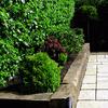 Preparar jardín de 60 m