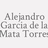 Alejandro Garcia De La Mata Torres